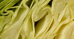 Sauerkraut in Reinform