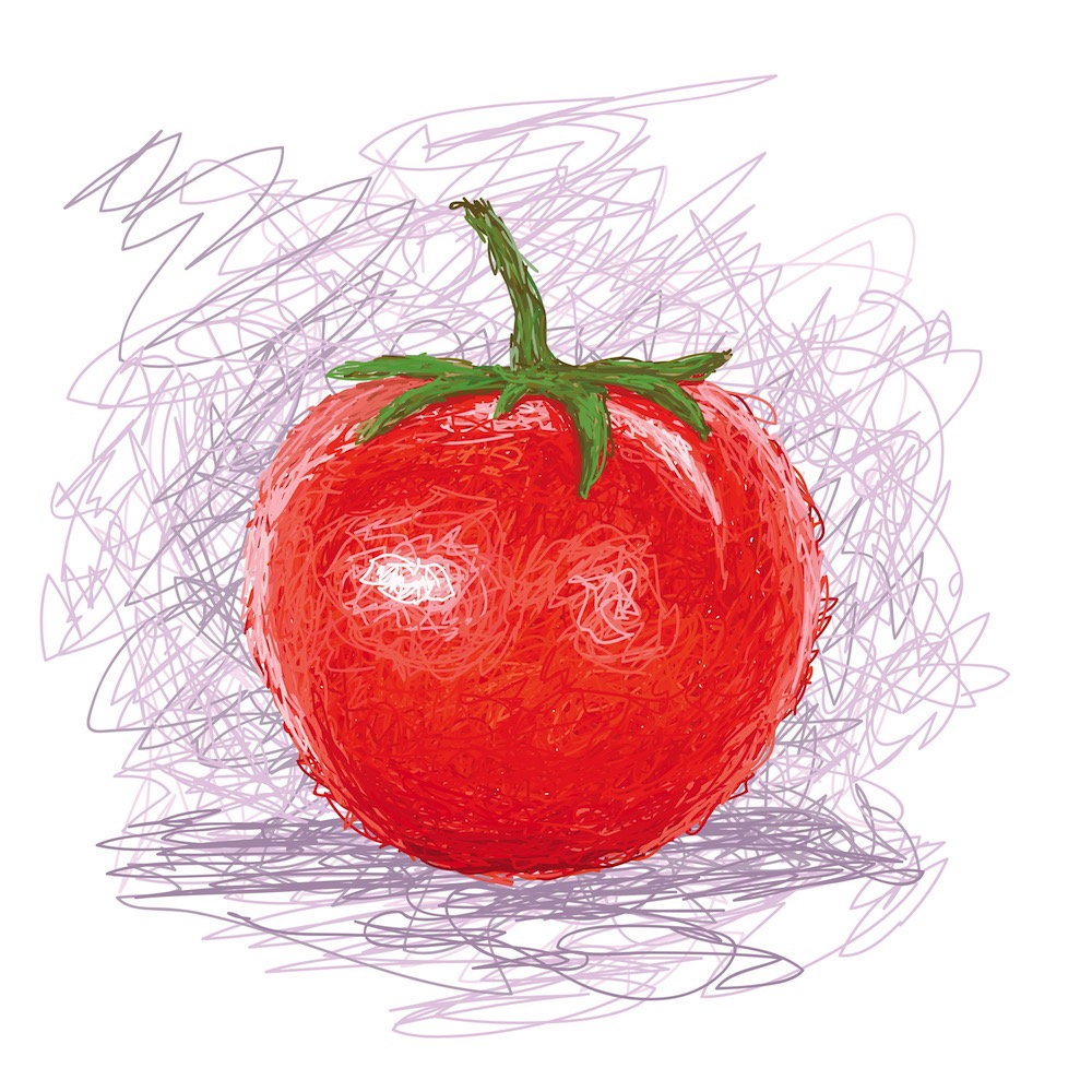 Tomate 2 - Am Schloß Saarbrücken